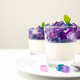 Hydrangea flower jelly panna cotta - PhotoDune Item for Sale