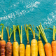 Farm Fresh Colorful Mini Carrots. Top Down View - PhotoDune Item for Sale