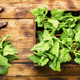 Fresh spinach leaves - PhotoDune Item for Sale