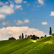 Austria, Slovenia Vineyards Sulztal, Herzerl Strasse - PhotoDune Item for Sale