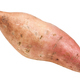 fresh sweet potato (ipomoea batatas) isolated - PhotoDune Item for Sale
