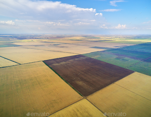 Aerial view of agricultural meadow. - Stock Photo - Images