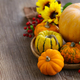 Still Life with Fresh Pumpkins - PhotoDune Item for Sale