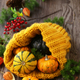 Still Life with Fresh Pumpkins - PhotoDune Item for Sale