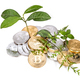 Conceptual cryptocurrency bitcoin with plant growing from within bitcoins. - PhotoDune Item for Sale