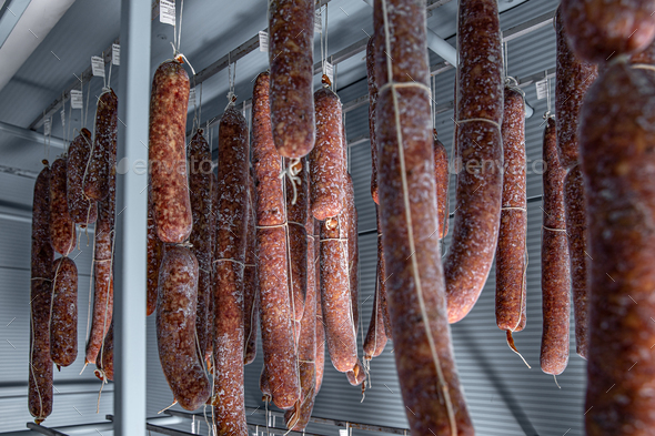 Mold is great for traditional salami styles - Stock Photo - Images