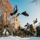 Gomel, Belarus. Winter City Park. Pigeons Doves Birds Are Flying Near Peter And Paul Cathedral In - PhotoDune Item for Sale