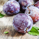 Large purple plum with water drops - PhotoDune Item for Sale