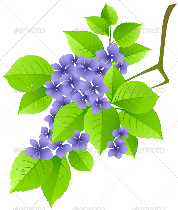 Floral Background with Green Branch - Flowers & Plants Nature