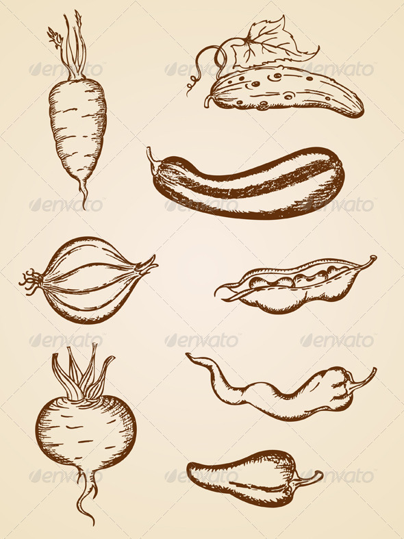 Vintage Vegetables Set - Food Objects