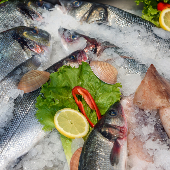 Seafood on ice at the fish market - Stock Photo - Images