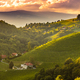 Sunset landscape of vineyard rows on Austrian countryside in Leibnitz Kitzeck im Sausal - PhotoDune Item for Sale