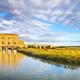 Castiglione della Pescaia Maremma, Diaccia Botrona park. Tuscany, Italy - PhotoDune Item for Sale