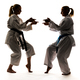Two girls in kimono are training karate - PhotoDune Item for Sale