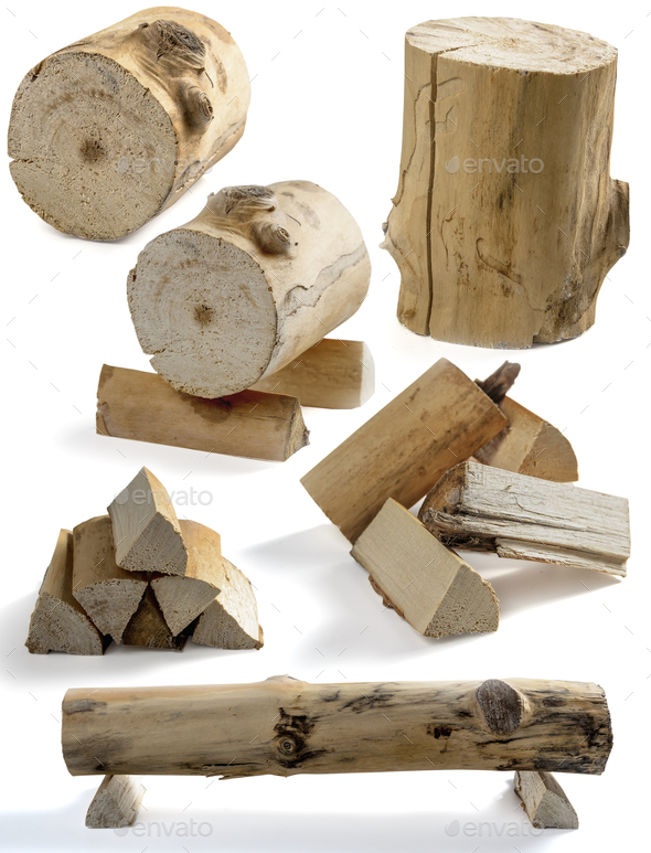 stump and firewood - Stock Photo - Images