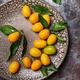 Fresh kumquat with leaves, top view - PhotoDune Item for Sale
