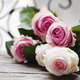 Pink roses on the wooden table - PhotoDune Item for Sale