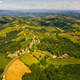 Aerial view of green hills and vineyards with mountains in background. Austria vineyards landscape - PhotoDune Item for Sale