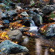 Waterfall on a mountain river in the autumn forest - PhotoDune Item for Sale