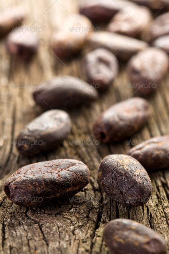 cocoa beans - Stock Photo - Images