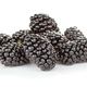 heap of fresh blackberry - PhotoDune Item for Sale
