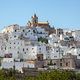 Panoramic view of the white and old city of Ostuni on a hilltop and with the cathedral on top - PhotoDune Item for Sale