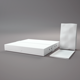 Cinema 4d setup and model Food bag - box and