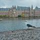 Hofvijver lake and Binnenhof , The Hague - PhotoDune Item for Sale