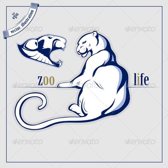 Big Wild Cat - Animals Characters