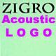 Acoustic News Logo