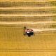Aerial view of combine harvesters on wheat field. Industrial background on agricultural theme - PhotoDune Item for Sale