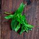 Mint leaves on wood - PhotoDune Item for Sale