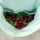 Young woman has fresh cherries on her apron. - PhotoDune Item for Sale