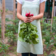 Young woman in the garden holds radish. - PhotoDune Item for Sale