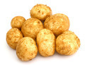 bunch of potatoes - PhotoDune Item for Sale