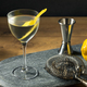 Boozy Dry Vesper Martini Cocktail - PhotoDune Item for Sale