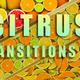 Citrus Transition 02 - VideoHive Item for Sale