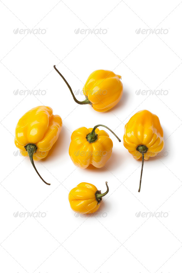 Yellow Scotch bonnet chili peppers - Stock Photo - Images