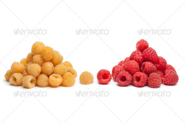 Yellow and red raspberries - Stock Photo - Images