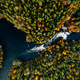 Aerial view of fast river in beautiful orange and red autumn forest, Finland. - PhotoDune Item for Sale