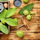 Unripe walnut tincture - PhotoDune Item for Sale