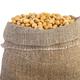 Jute sacks with soja beans - PhotoDune Item for Sale