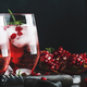 Red cocktail with cold vodka and pomegranate juice, ice cubes and rosemary - PhotoDune Item for Sale