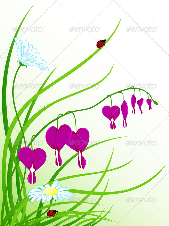 Floral Background with Chamomiles - Flowers & Plants Nature
