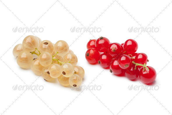 Fresh white and red currants - Stock Photo - Images