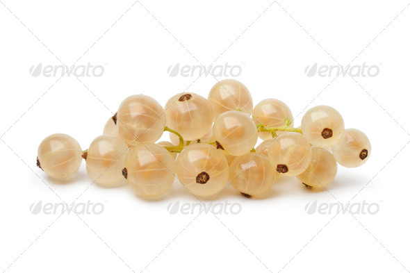 Fresh white currants - Stock Photo - Images