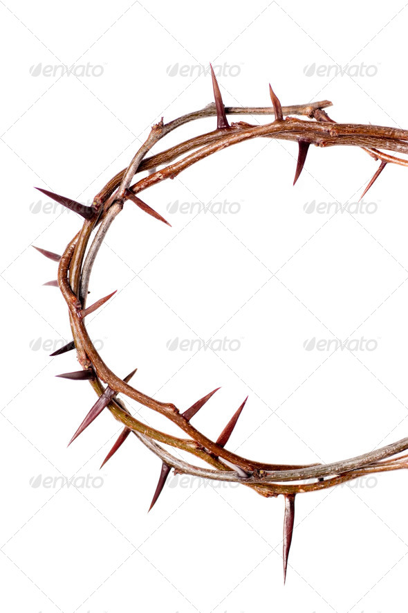 Crown of Thorns - Stock Photo - Images