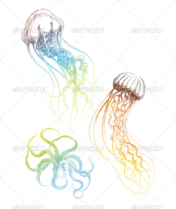 Jellyfish And Octopus, Vector - Animals Characters