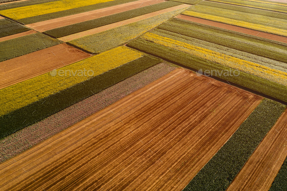 Aerial view of cultivated agricultural fields in countryside from drone pov - Stock Photo - Images