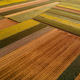 Aerial view of cultivated agricultural fields in countryside from drone pov - PhotoDune Item for Sale
